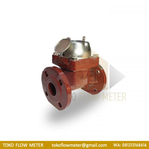 SHM 2 Inch DN50 Type Sewage/Waste Water Flow:- TFM
