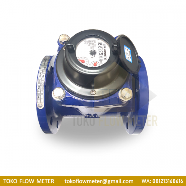 3 Inch CALIBRATE Flange DN80 Water Meter - TFM