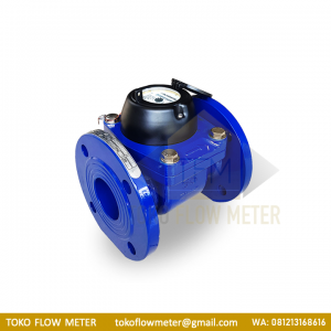 2.5 Inch CALIBRATE Flange DN65 Water Meter - TFM